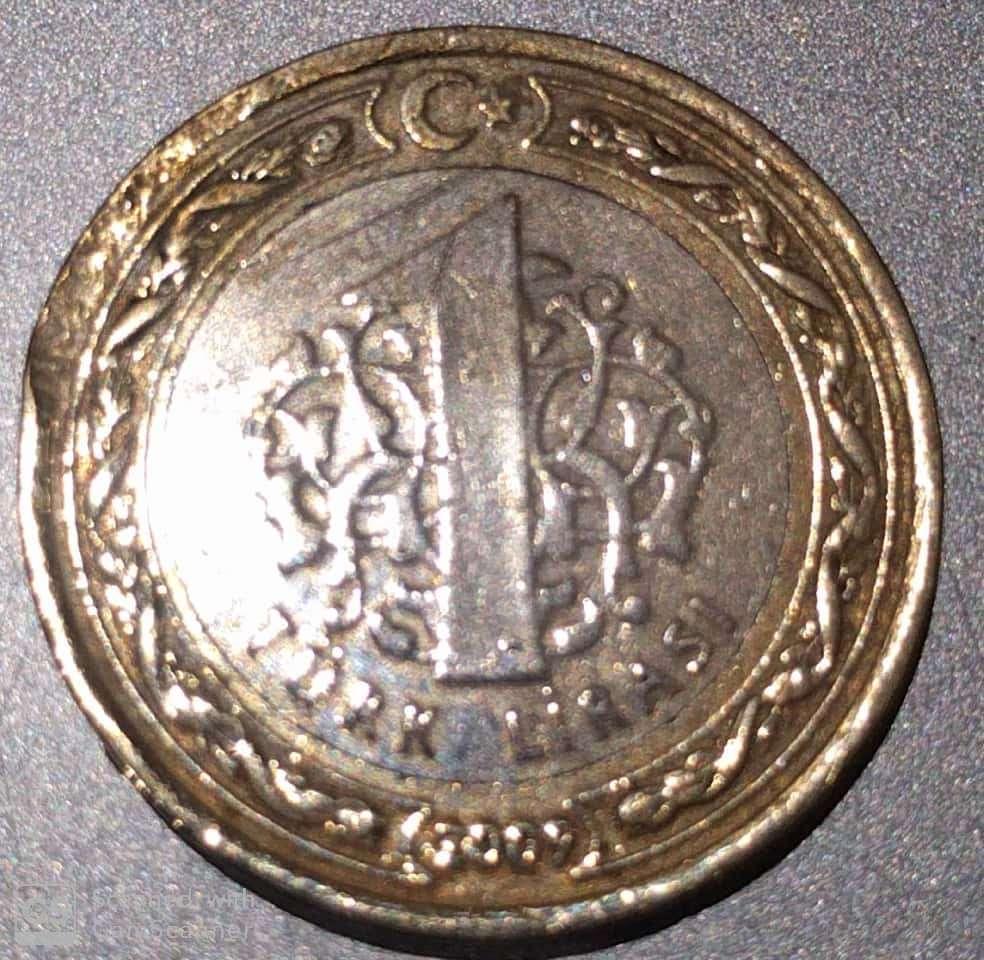 1 turk lirasi coin value